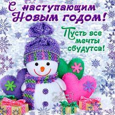 С наступающим Новым годом !