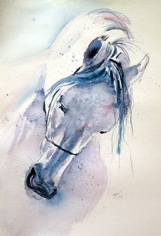 Buy White horse 50 x 35 cm, Watercolour by Kovács Anna Brigitta on Artfinder. Discover thousands of other original paintings, prints, sculptures and photography from independent artists. Watercolor Horse, Watercolor Animals, Watercolour, Watercolor Canvas, White Horse Painting, Bird Artwork, Horse Artwork, Horse Paintings, Murphy Bed Plans