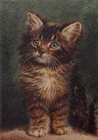 1910 A study of a kitten by Wilson Hepple