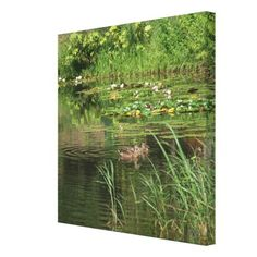 Ducks in Pond Photography on Canvas - photography gifts diy custom unique special