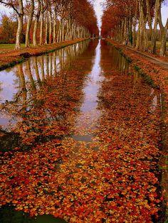 The beauty of autumn, Canal de Garonne, France