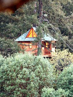 Out 'n' About Treehouse Treesort, Cave Junction, Oregon. Many different tree houses to choose from!