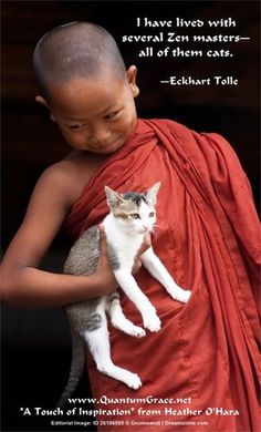 Love is the absence of judgment - the Dalai Lama spiritual leader of Tibetan buddhism Dalai Lama, Buddhist Quotes, Spiritual Quotes, Positive Quotes, Great Quotes, Me Quotes, Inspirational Quotes, A Course In Miracles, Motivation