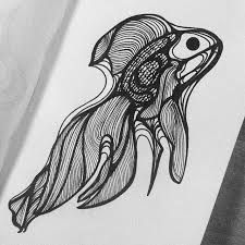 Fish pen drawing   #fish #poisson #pen #ballpoint #stylo #stylobille #artwork #art Black Pen Drawing, Ballpoint Pen Drawing, Illustration Sketches, Goldfish, Pencil Art, Art Inspo, Doodles, Black And White, Ink Drawings