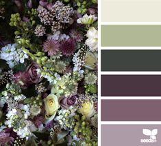 flora palette, by design seeds Colour Pallette, Colour Schemes, Color Combos, Color Patterns, Design Seeds, Colorful Decor, Colorful Interiors, Pintura Exterior, Color Lila