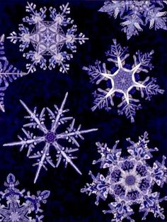 Paula Nadelstern –– Paula's incredible quilts capture the delicate, three-dimensional effect of winter's snowflakes. Learn how to create the endless variations found in snowflakes using the techniques Snowflake Quilt, Snowflake Wallpaper, Snowflake Template, Snow Flake Tattoo, Kaleidoscope Quilt, Ice Crystals, Purple Christmas, Snow And Ice, Winter Beauty