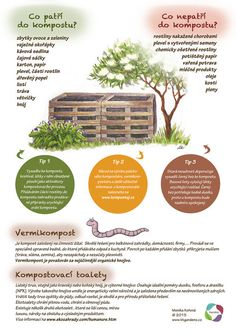 Kartičky návrhy — KT gardens ktgardens Land Art, Growing Plants, Indoor Plants, Homesteading, Flora, Environment, Organic, Tips, Nature
