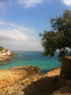 Cala San Vincent Mallorca ❤