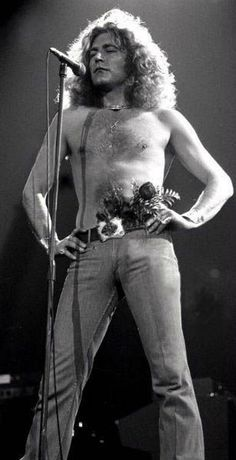 Hey Robert Plant, is that a bunch of flowers in your pants, or…