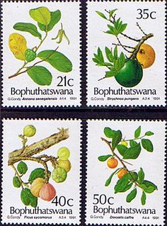 Bophuthatswana 1991 Edible Wild Fruit Set Fine Mint SG 252 5 Scott 254 7 Other…