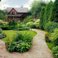 Outdoor Gardens, Backyard Inspiration, Landscape Design, Shade Garden, Backyard Landscaping Designs, Evergreen Landscape Front Yard, Rustic Landscaping, Backyard Landscaping, Backyard
