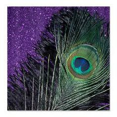 Purple and Black Peacock Shower Curtain > Purple and Black Peacock > Christy's Online Photography Store