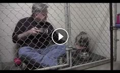 Now THIS is my kind of human.  I would have done the same thing to be honest.  'Restoration of faith in humanity' at its finest.  WATCH: This veterinarian knew he had to get this starving rescued puppy to eat something, so he did an experiment. He got in the cage along with her, put his breakfast in a metal bowl just like hers, and showed her that they are equals- both deserving a good meal, and a little love.  STORY: www.fox13news.com/news/92623421-story