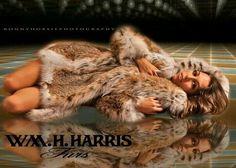 William H. Harris Furs ad