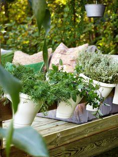 Pottene i plast er som skapt for å henge på rekkverket, kr 129 pr. Planter Pots, Garden, Outdoor, Bohemian, Outdoors, Garten, Lawn And Garden, Gardens, Outdoor Games