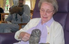 """Care home welcomes animal assisted therapy with visit from Owl Magic. """"Animal-assisted therapy has been shown to have significant benefits for care home residents, especially those living with dementia, as physical contact with the animals is therapeutic, stimulates a social response and reduces stress."""" Living With Dementia, Hens, Welcome, Stress, Psychological Stress"""