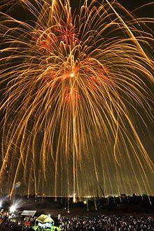 Ogaki Fireworks Festival 24inchi