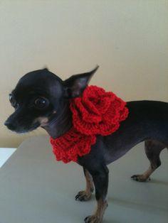 Red Crochet Flower Dog Collar. $17.00, via Etsy. Crochet Dog Sweater, Dog Crochet, Crochet Gifts, Crochet Animals, Crochet Yarn, Crochet Flowers, Girl Dog Collars, Pet Collars, Chat Crochet