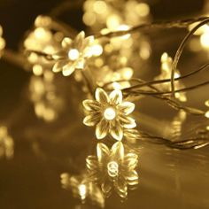 Indoor Sunflower Fairy Lights With 30 Warm White LEDs by for sale online Pottery Barn Outdoor, Ruby Room, Solar Fairy Lights, 60th Birthday Party, Tk Maxx, Pretty Lights, Flower Petals, Twinkle Twinkle