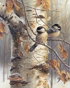 Stunning Wildlife Paintings by Denis Mayer Jr. More