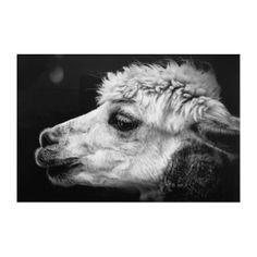 Alpaca side-view portrait acrylic wall art - portrait gifts cyo diy personalize custom