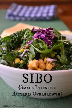 SIBO {Small Intestine Bacteria Overgrowth}