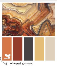 new Ideas exterior house colors palette design seeds Fall Color Palette, Colour Pallette, Color Palate, Colour Schemes, Color Combinations, Orange Palette, Neutral Palette, Paint Schemes, Palette Design