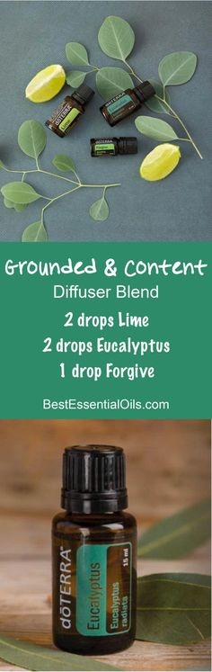Grounded and Content doTERRA Diffuser Blend