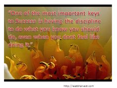 """""""One of the most important keys to Success is having the discipline to do what you know you should do, even when you dont feel like doing it."""""""