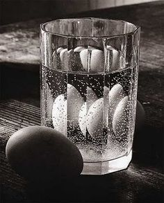 Untitled (still life) (1940-54) by Czech photographer Josef Sudek (1896-1976)