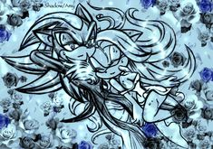 Silver The Hedgehog, Shadow The Hedgehog, Sonic The Hedgehog, Maria Rose, Sonic Generations, Shadow And Amy, Sonic Heroes, Sonic Fan Art, Amy Rose