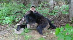 2017 Black Bear Hunt in NB Canada.  Bear Valley Outfitters.
