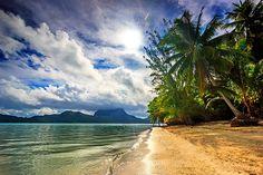 #nature, #landscape, #beach, #sea, #palm trees, #clouds, #island, #sunlight, #tropical, #Bora Bora, #French Polynesia | Wallpaper No. 357739 - wallhaven.cc