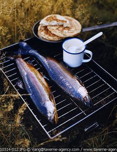 FISH on the grill... What camping looks like!