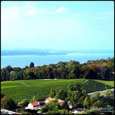 Beautiful landscape in #Geneva #genevatourism #visitgeneva #visitgva #aerial #aerialview #aerialphoto #aerialcity #drone #dronephoto #dronefly #dronestagram #droneoftheday #picoftheday #photoofheday #S1000 #camera #sony #nex7 #panorama #360 Aerial View, Beautiful Landscapes, Sony, Vineyard, Dolores Park, Amazing, Travel, Outdoor, Viajes