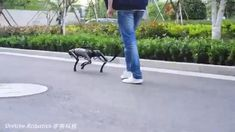 """A vision of the future when our """"dogs"""" meet in the street.what will you name your quadruped robot friend? Latest Technology Gadgets, Technology Hacks, Futuristic Technology, Cool Technology, Robot Videos, Military Robot, Learn Robotics, Boston Dynamics, Techno Gadgets"""