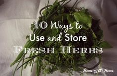 10 Ways To Use And Store Fresh Herbs
