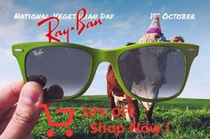 Just got my RayBan sunglasses from this site. The color on the lenses is exactly as pictured. They are super light and comfortable. Do It Yourself Ikea, Vegetarian Day, Sea Wallpaper, Ray Ban Sunglasses, Sunglasses Outlet, American Horror Story, Ray Bans, October 1, Buddha
