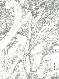 Tapete: In the wood - Die TapetenAgentur