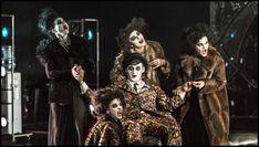 Ivan Acher: STERNENHOCH Národní divadlo - Opera The Fool, Vip, Opera, Concert, Sterne, Opera House, Recital, Festivals
