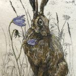 Harebell and Hare by Annabel Langrish