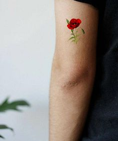 Temporary Tattoo Red Poppy, Symbol of Pride & Tear. The fidelity / gift for man or woman. Green thumb, explorer in the open air / speak the flower language Poppy Tattoo Small, Red Poppy Tattoo, Poppy Tattoo Meaning, Tattoos With Meaning, Thumb Tattoos, Forearm Tattoos, Simple Quote Tattoos, Small Tattoos, Outdoor Tattoo