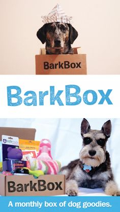 A box of high quality dog products for your pup, delivered to your door every month! #gift #dogs