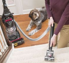 What is the benefit of best vacuum for pet?