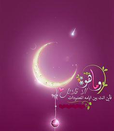 Ramadan Karim, Ramadan Mubarak, Islam Quran, Arabic Words, Eid, Free Books, Quotations, Artsy, Neon Signs