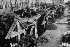 Graves of Hungarian freedom fighters who died during revolution against Soviet-backed regime.© Time Inc.Michael Rougier