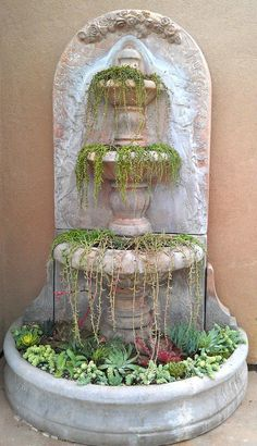 Training succulents in a garden fountain! Succulents In Containers, Cacti And Succulents, Planting Succulents, Planting Flowers, Succulent Gardening, Container Gardening, Unique Gardens, Beautiful Gardens, Mini Terrarium
