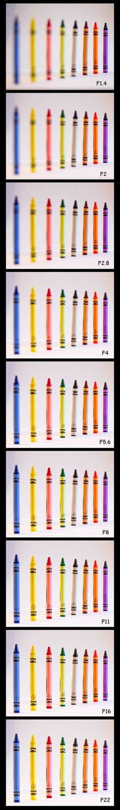 Photography 101 Tutorial: How To Use Aperture | Beck Impressions Photography
