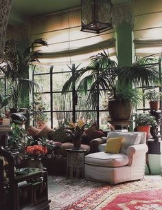I want my living room to be full of plants :)