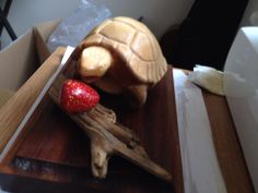 The tortoise and the strawberry 1. Follow me at www.cutmarks.co.uk